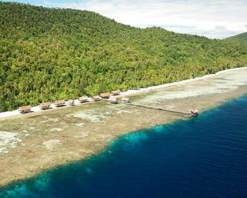 Dive Raja Ampat From Kri Eco Resort 171 Dive Packages